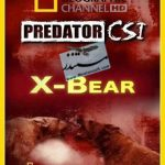 National Geographic - Predator CSI X-Bear
