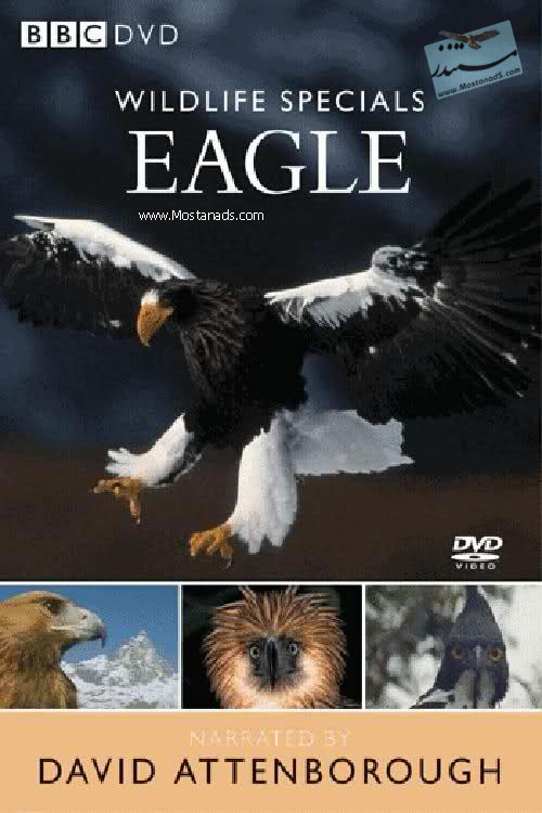 BBC - Wildlife Specials - Eagle 1997