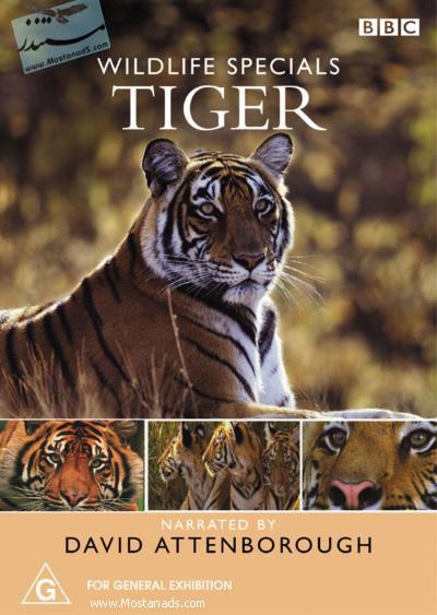 BBC - Wildlife Specials - Tiger 1999