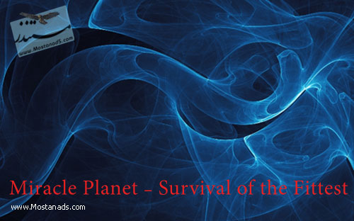 Miracle Planet - Survival of the Fittest