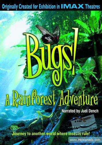 IMAX - Bugs A Rainforest Adventure