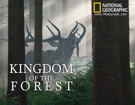 National Geographic – Kingdom of the Forest (2010)
