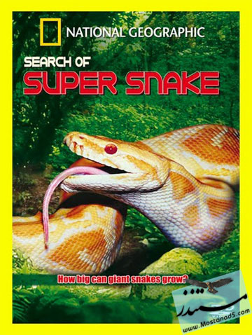 Search For The Super Snake