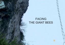 مواجهه با زنبورهای عظیم