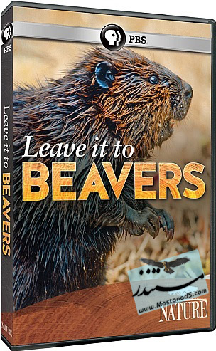 Leave.it.to.Beavers