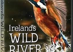 رودخانه وحشی ایرلند (۲۰۱۴)