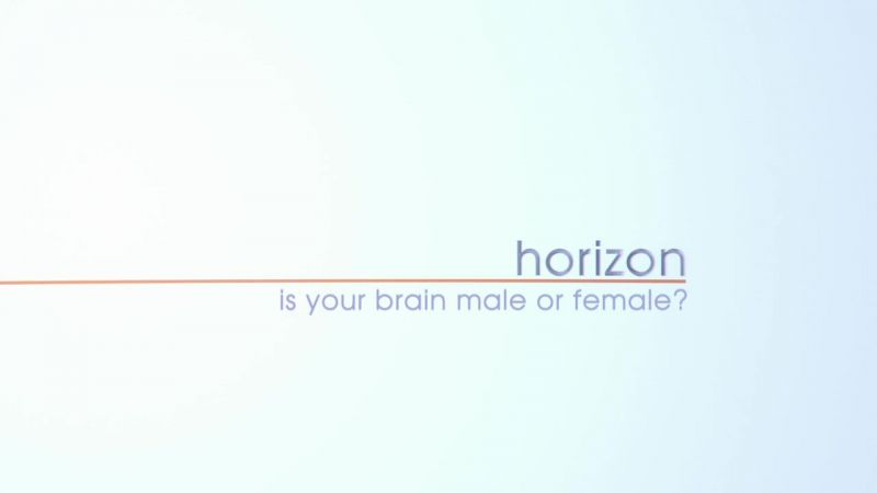 Is.your.Brain.Male.or.Female