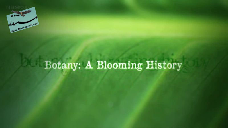 A Blooming History