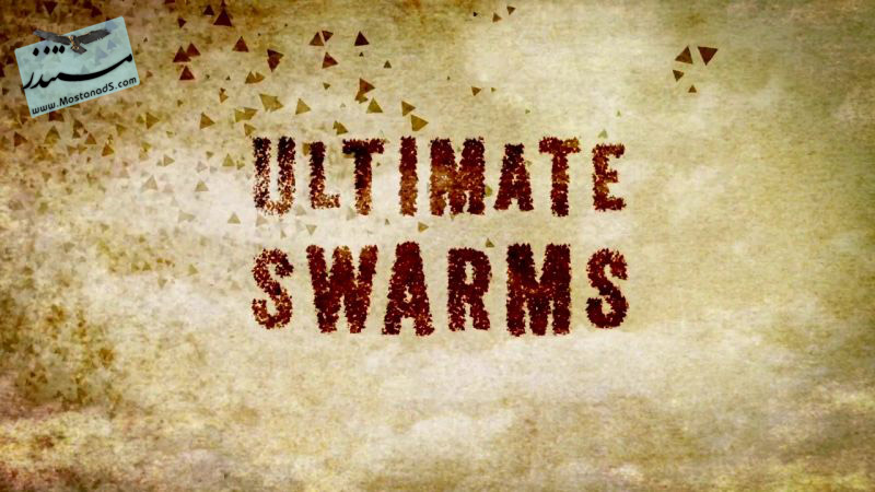 Ultimate Swarms
