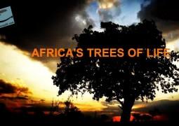 درختان زندگی آفریقا (۲۰۱۶)