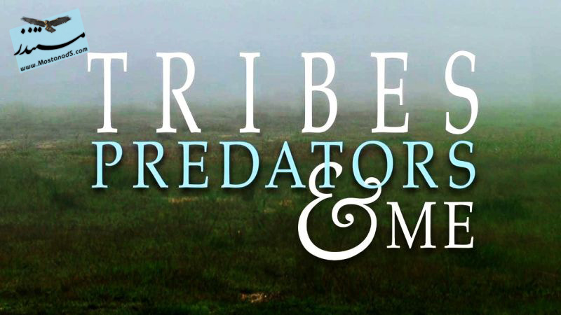 Tribes Predators and Me