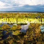 جهان زیرین آمازون (۲۰۱۶)