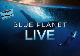 سیاره آبی زنده (۲۰۱۹)