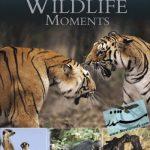 BBC Great Wildlife Moments