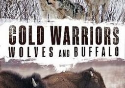 مستند جنگجویان سرما