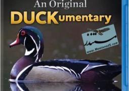 یک مستند اردکی اصیل