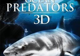 Ocean Predators – درندگان اقیانوس