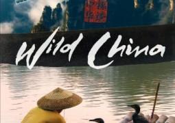 حیات وحش چین