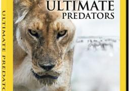 مستند Ultimate Predator: Chimp Attack