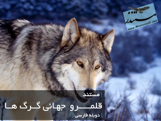 قلمرور جهانی گرگ ها