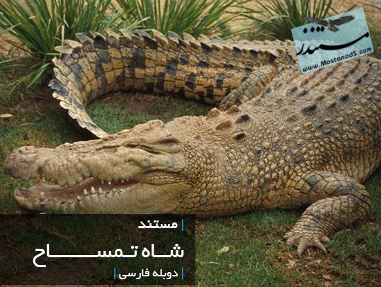 شاه تمساح ( دوبله فارسی)