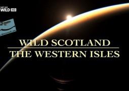حیات وحش اسکاتلند: جزایر غربی