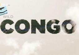 حیات وحش رود کنگو