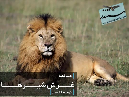 غرش شیرها (دوبله فارسی)