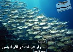 اسرار حیات در اقیانوس (دوبله فارسی)