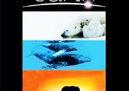 زمین (۲۰۰۸)