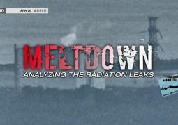 ذوب سوخت هسته ای: آنالیز نشت رادیواکتیو (۲۰۱۴)