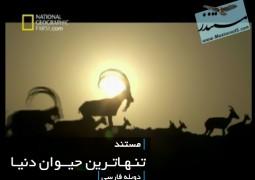 تنهاترین حیوان دنیا (دوبله فارسی)