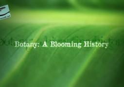 گیاه شناسی: یک تاریخچه شکوفا (۲۰۱۱)
