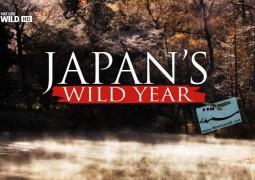 حیات وحش در ژاپن (۲۰۱۵)