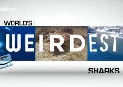خارق العاده ترین در جهان: کوسه ها (۲۰۱۵)