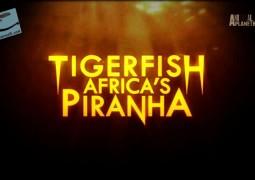 ببرماهی: ماهی گوشتخوار آفریقایی (۲۰۱۴)