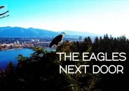 دروازه بعدی عقاب ها (۲۰۱۶)