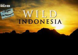 حیات وحش سرنوشت: اندونزی (۲۰۱۵)