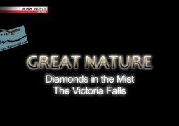 الماس در مه: آبشارهای ویکتوریا (۲۰۱۴)