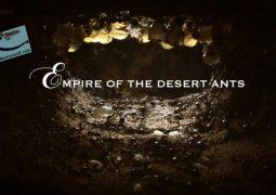 امپراتور مورچه های بیابان (۲۰۱۱)