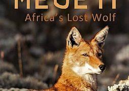 مگتی: گرگ گمشده آفریقا (۲۰۱۶)