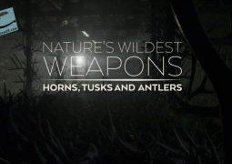 وحشی ترین سلاح های طبیعت (۲۰۱۷)