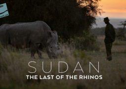 سودان: آخرین کرگدن (۲۰۱۷)